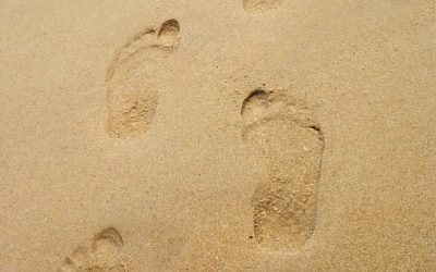 Four approaches to expanding your digital footprint